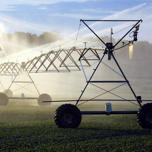 agricultural_Crop520X520